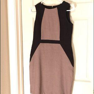 Ann Taylor Petite Career Sheath Dress |size 2